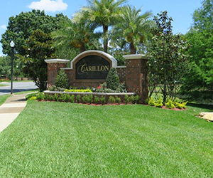 landscaping maintenance provided by Grasshoppers in Orlando and Oviedo FL